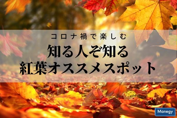 """""""コロナ禍で楽しむ知る人ぞ知る紅葉オススメスポット"""""""